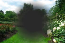 She can only see around the edges, the centre is a grey blob
