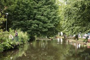 Hemel Hempstead Water Gardens
