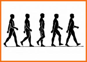 walking is sensible exercise
